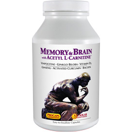 Memory-Brain-with-Acetyl-L-Carnitine